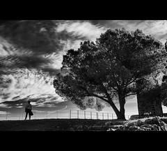 Hostalric's Castle viewpoint (EddyB) Tags: eddyb fuji fujinon xt1 xf1855f284mm europa europe catalua catalunya catalonia hostalrich bw blackandwhite blancoynegro factorhumano humanfactor silueta silhouette arbol tree castelldhostalric hostalriccastle