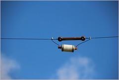 DL0HAL trap of W3DZZ (gynti_46) Tags: hamradio dlohal darc w19 amateurfunk antenne antennas trapdipole