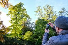 DSCF0181 (Emrys Schoemaker) Tags: autumn cotswolds gloucestershire westonbirt phone