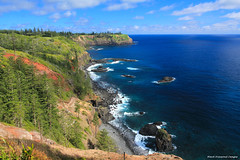 Captain Cook Lookout, Norfolk National Park, Norfolk Island (Black Diamond Images) Tags: norfolk australia norfolkisland captaincooklookout norfolknationalpark