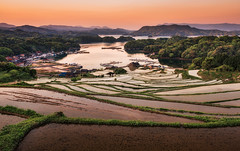 Oura Rice Terraces (arcreyes [-ratamahatta-]) Tags: morning plants japan sunrise season spring rice saga ricefields riceterraces kyushu karatsu  tanada 2013 sagaprefecture arcreyes
