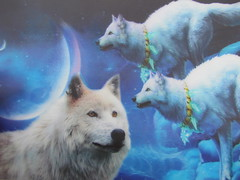 dream a little dream (William Keckler) Tags: blue moon wolf dream kitsch kitschy fleamarket lenticular wolves dreamalittledream popularimagination