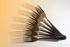 Forks (obviously!) (Janine Lane Photos) Tags: stillife thephotographyinstitute