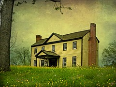 The 18th Century Eagle Tavern:  Halifax Town, Halifax County, North Carolina (EdgecombePlanter) Tags: texture colors rural nc colonial wildflowers pastoral federal 18thcentury textured rurallandscape