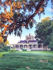 Rip Van Winkle Gardens Jefferson Island Louisiana Antebellum Home Mansion History 44L2J4 (Dallas Photoworks) Tags: rip van winkle gardens jefferson island louisiana subtropical lush