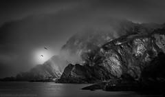 Headland (Richard Walker Photography) Tags: sea blackandwhite mist seascape mountains fog clouds landscape coast rocks harbour devon headland ilfracombe landscapephotography