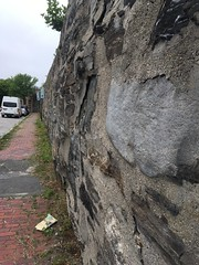 Retaining Wall (Spirits Alive at the Eastern Cemetery) Tags: fence flora retainingwall 2016 easterncemetery spiritsalive 20160707 byhdoggett