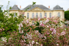 Spring blossoms at Rodin Museum (bygeorge) Tags: france paris museerodin rodinmuseum garden flowers