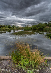 Willows Pond (Steven Peachey) Tags: canon landscape pond wingate sky clouds exposure canon6d ef1740mmf4l willowspondwingate leefilters lee09gnd stevenpeachey lightroom5 countydurham