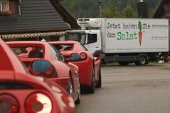 Jetzt haben Sie den Salat (Stephi 2006) Tags: feldbergschwarzwald badenwrttemberg deutschland