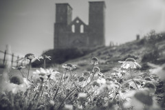 Dreamy Reculver (Sean Hartwell Photography) Tags: reculver kent england stmarys church ruins flowers building monochrome blackandwhite dream
