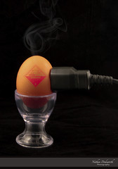 Electrified Egg (Nathan Dodsworth Photography) Tags: fun humour food egg electrictiy cables eggcup steam creativephotographyphotoshop art signs warning tabletop light