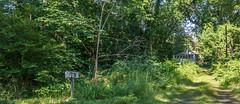 _DSC0090 (johnjmurphyiii) Tags: 06416 connecticut cromwell cromwelllanding originalnef park riverroad summer tamron18270 usa johnjmurphyiii
