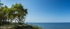 (klgfinn) Tags: autumn balticsea grass landscape sand sea shore sky skyline tree water