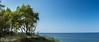 Балтийское море (klgfinn) Tags: autumn balticsea grass landscape sand sea shore sky skyline tree water балтийскоеморе берег вода горизонт дерево море небо осень пейзаж песок трава