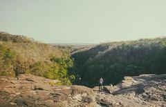 C E R R A D O (andr3ms) Tags: brasil brazil cerrado pantanal landscape paisagem panorama nature natureza morning trilha adventure aventura nokia lumia 930 microsoft vsco