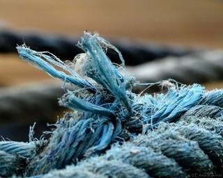 Harmonie en bleu et gris