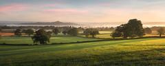 Countryside Morning (artursomerset) Tags: glastonburytor mist sunrise morning trees countryside somerset england avalon grass light