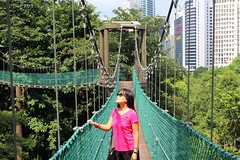 Tomorrow may rain, so I'll follow the sun. (joyful JOY) Tags: kl forest ecopark klecopark bukitnanasforestreserve kualalumpur malaysia canopywalk