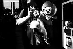 no.950 (lee jin woo (Republic of Korea)) Tags: snap photographer street blackandwhite ricoh mono bw shadow subway self hand gr korea snapshot streetphotograph photography monochrome 흑백사진 거리사진 대한민국