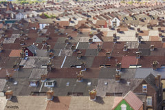 Victoria's Settlements (Carl Yeates) Tags: canon550d houses terraced roof