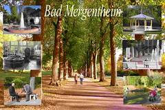 IMG_2988- bild 2 neu  Bad Mergentheim a1_bearbeitet-1