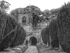 St Peters Church Croft on Tees (davidntaylor1968) Tags: architecture tree builtstructure arch buildingexterior thewayforward history historic day footpath growth outdoors archway nopeople diminishingperspective oldtown leading showcaseseptember photography