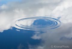 Himmel&Hav (KronaPhoto) Tags: 2016 macro natur himmel sky hav ocean water pond mirror skyer speil speiling ring rings waves blger sirkler circles nature norway