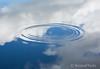 Himmel&Hav (KronaPhoto) Tags: 2016 macro natur himmel sky hav ocean water pond mirror skyer speil speiling ring rings waves bølger sirkler circles nature norway