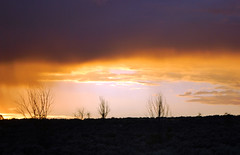 New Mexico Sunset (Lochaven) Tags: sunset newmexico southwest desert