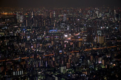 Tokyo night view (shinichiro*) Tags: night tokyo view  crazyshin 2012   skytree afsvrmicronikkor105mmf28gifed order500 nikond800e 20120720d016258 tokyojapanjulysummer
