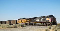 Southern Pacific UP diesel (3236) (DB's travels) Tags: california railroad unionpacific tempcrr