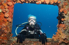Dive Site in Sint Maarten - Carib Cargo (Ocean Explorers St. Maarten) Tags: shark dive scuba shipwreck wreckdiving caribcargo wwwdivesxmcom oceanexplorersdivecenter scubadivingstmaartenstmartin week302012 scubadivingsintmaartensintmaarten