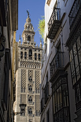 Giralda (Zu Sanchez) Tags: street tower canon la photo calle sevilla spain europa europe torre photographer andalucia andalusia giralda canoneos andalusian andalusie     canoneos1000d ineedspain