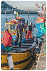 Kalk Bay Fishermen -13 (Marc+Photography.) Tags: sea color colour southafrica boats boat fisherman fishermen bright harbour capetown fishingboats catchy kalkbay snoek catchingfish seaharbour kalkbayharbour marcphotography marcplusphotography marcodendaal