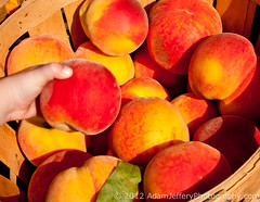 Grab A Peach (adamjefferyphotography) Tags: nyc newyorkcity fruit hand farmersmarket manhattan fresh peaches buckets produce organic unionsquare ripe
