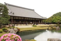 Tenryuji Garden - Kyoto (Alejandro Muiz Delgado) Tags: japan temple kyoto religion shinto shintoism sintoismo japon shinto