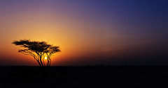 southern sun (ayazay) Tags: silhouette skies desert aa 2012 afterglow pauloakenfold bunkka summerevenings southernsun hopesandfears canon60d canonefs1585mmf3556isusm