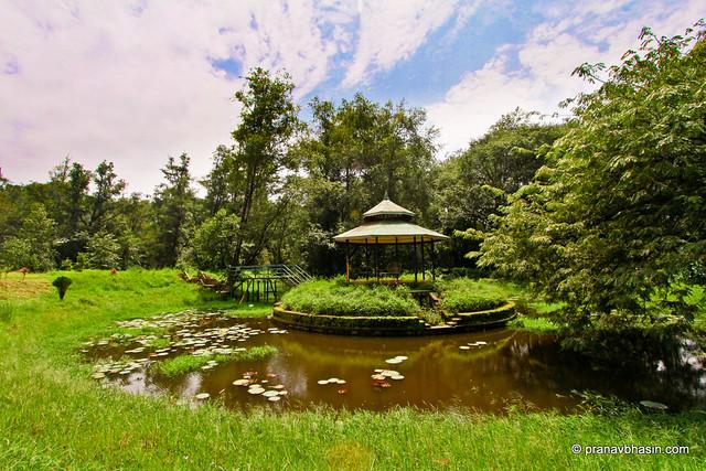 Hydro Park At Munnar, Kerala