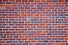 2012 08 19 - 7313 - DC - You Are Not Important (thisisbossi) Tags: usa streetart graffiti washingtondc chalk dc published nw unitedstates northwest bricks highcontrast blogs vandalism dcist walls 14thstreet midcity shaw important depressing selfesteem fourteenthstreet borderstan