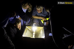 Moth Trap Huddle (Dom Greves) Tags: uk summer people night woodland dark nocturnal wildlife august surrey event heathland ockhamcommon mothtrapping skinnertrap surreywildlifetrust