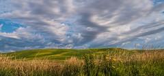 field with clouds.IMGP2505 (candysantacruz) Tags: washington easternwashington palouse farm fields clouds