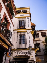 Spain May-June 2016-1047.jpg (bruce.lande) Tags: barcelona cathedral cava church cordoba flamenco friends granda history madrid mosque seville sitges spain vacation vowrenewal wine