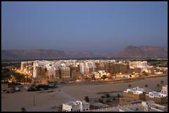 DSC_6578 (Sgaffo) Tags: yemen travelling 20072008 socotra