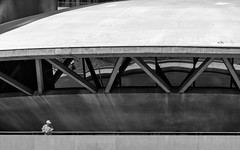 'Don't look back ... ' (Canadapt) Tags: lone man city hall toronto architecture concrete reflection canadapt nathan philips square