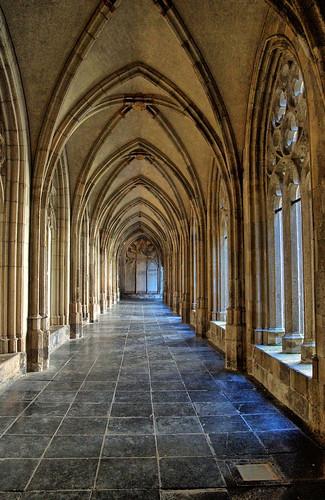 Utrecht, Sint Martin Cathedral Cloisters V