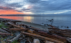 Flying Solo (Paul Rioux) Tags: nature britishcolumbia bc vancouverisland victoria colwood westshore morning sunrise outdoor calm water reflection driftwood log logs clouds