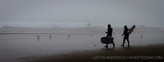 Surfers in the Fog (justin_anderson_PNW) Tags: surf surfing surfers bodyboard fog foggy cold weather bad determined oregon ocean beach shorebreak waves sea pacific northwest cascadia short sands