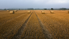 End of Summer 2016 (artursomerset) Tags: summer straw bales hay somerset england harvest agricultural