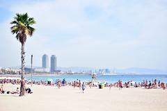 Platja de Barcelona (laura.garcia.gustems) Tags: barcelona barceloneta platja mar mediterrani torres mapfre palmera gent sorra beach people summer verano catalonia catalunya ngc